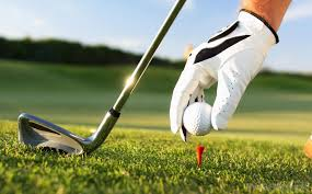 Golfing photo from Google